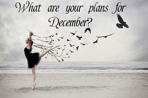 What are your plans for December?