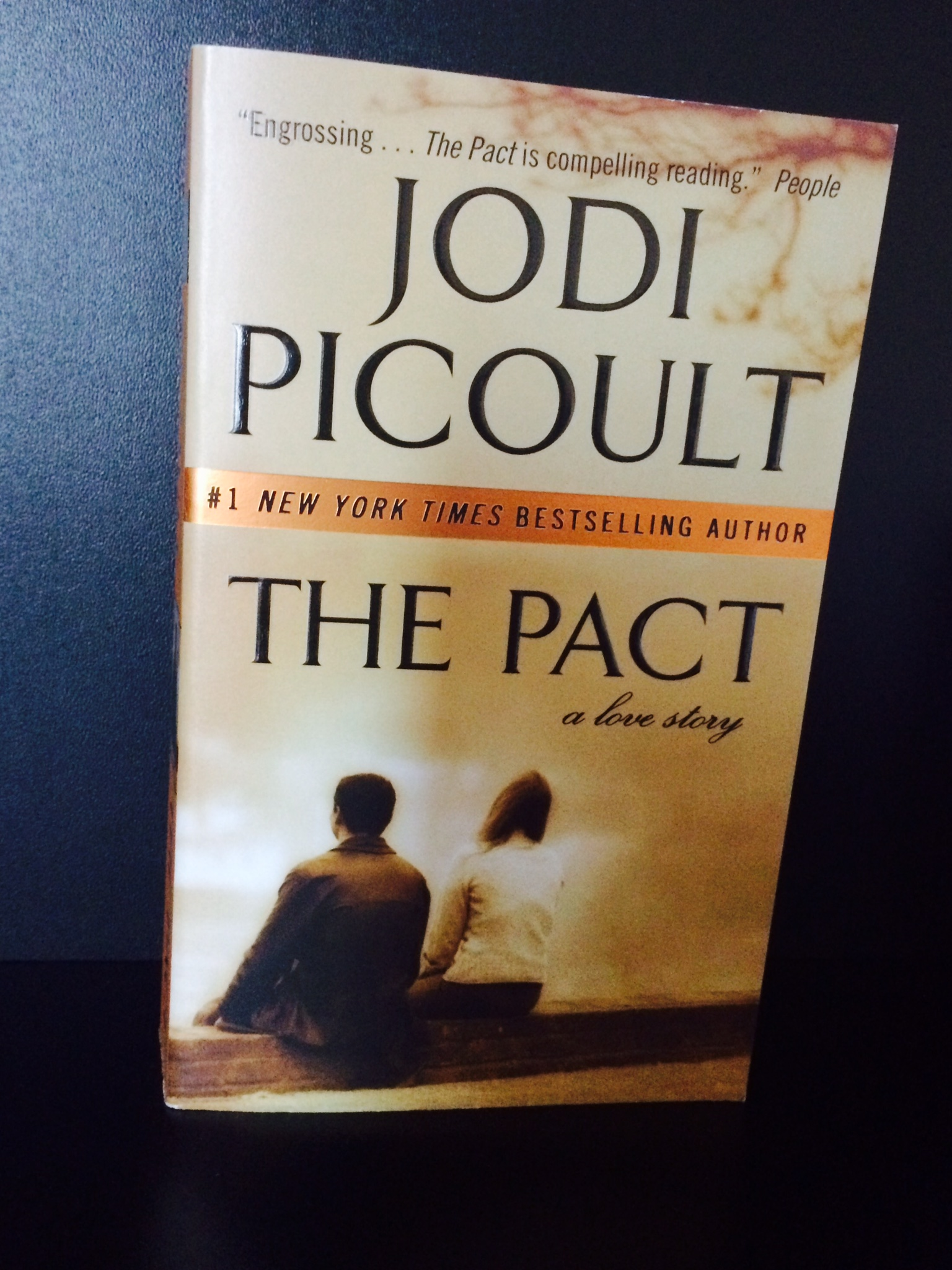 Image result for the pact book